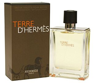TERRE D'HERMS   E.D.T 100 ML
